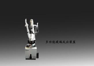 单层玻璃反应釜DGN-5L